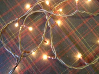 Mini Clear Seed Lights
