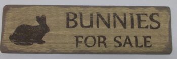 Bunnies for sale sign