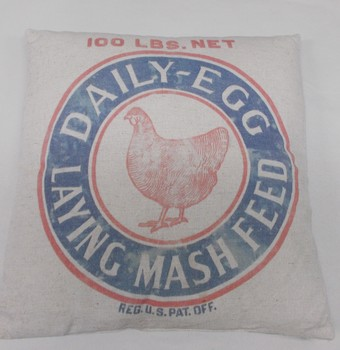 Daily Egg Sack Pillow